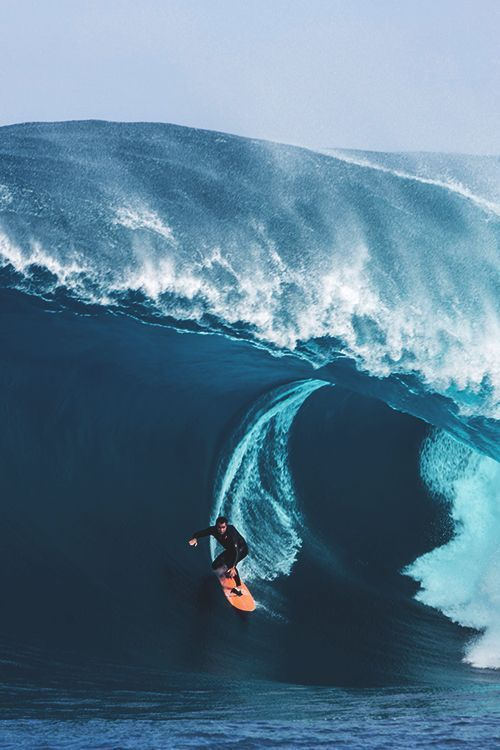 "worldfam0us: ""Big Wave Surfing 