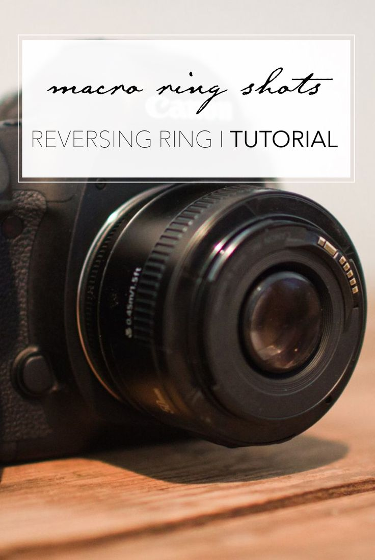 Tutorial: How to take macro ring shots with a reversing ring (canon specific).