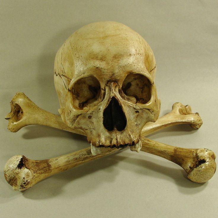 Череп с костями фото