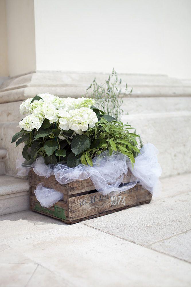 addobbo matrimonio con piante - Cerca con Google