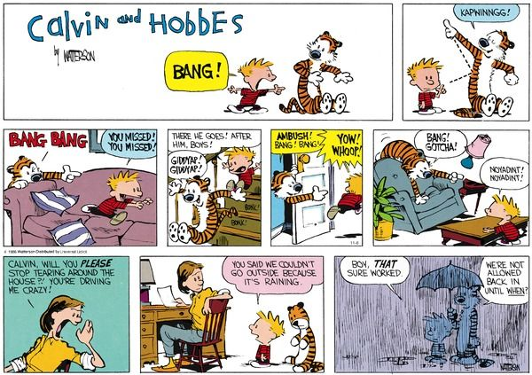 Calvin and Hobbes Comic Strip, November 06, 2016     on GoComics.com