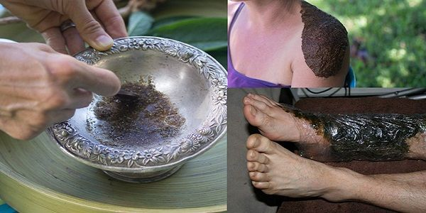 This Miraculous Plant Heals Bone Fractures And Cures Many Diseases  RECIPE