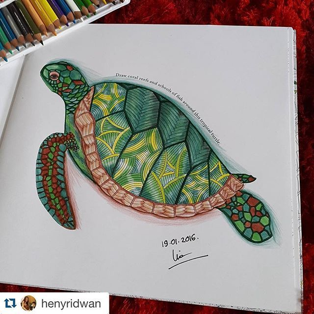 From Millie Marottas Animal Kingdom Colouring Book Instagram Media Florestaencantada2