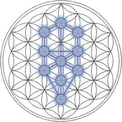 La Fleur de Vie – Signification et Origines La « Fleur de Vie » peut être trouvée dans toutes les religions majeures du monde. Elle contient les modèles de la création tels qu'ils émergèrent du « Grand Vide ». Tout est créé selon les pensées du Créateur....