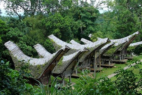 Toraja houses, Tana Toraja, Sulawi, Indonesia