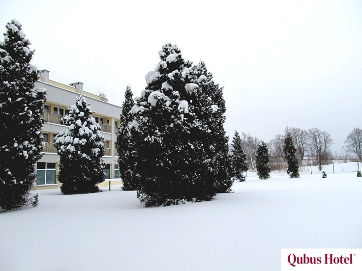 Winter views in the hotel garden in Qubus Hotel Wałbrzych