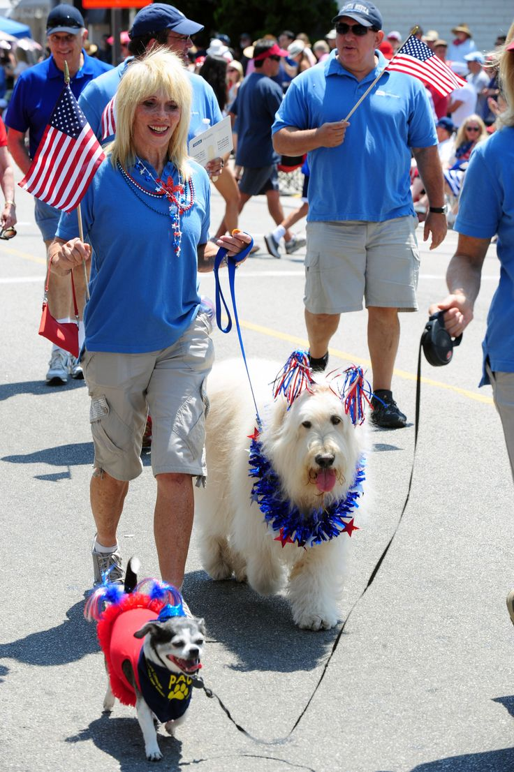 UCLA PAC Volunteers at the 4th of July parade in Pacific Palisades
