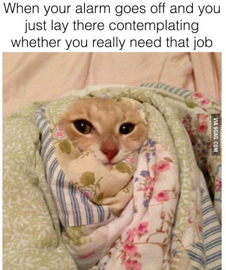 Mondays.