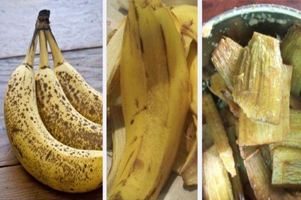A banán az egyik legkedveltebb gyümölcs, amelynek magas kálium tartalma híres. 40%-ban található fontos ásványi anyag a banán héjában. De azt kevesen tudják, hogy lehet lefogyni a banánhéj segítségével!   A kálium kiválóan fokozza az anyagcserénket, testünk ennek köszönhetően még több kalóriát képes...