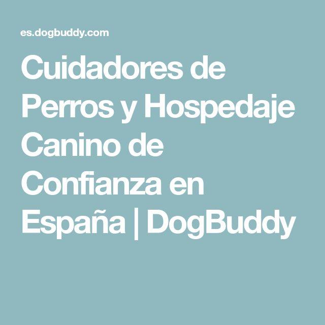 Cuidadores de Perros y Hospedaje Canino de Confianza en España   DogBuddy