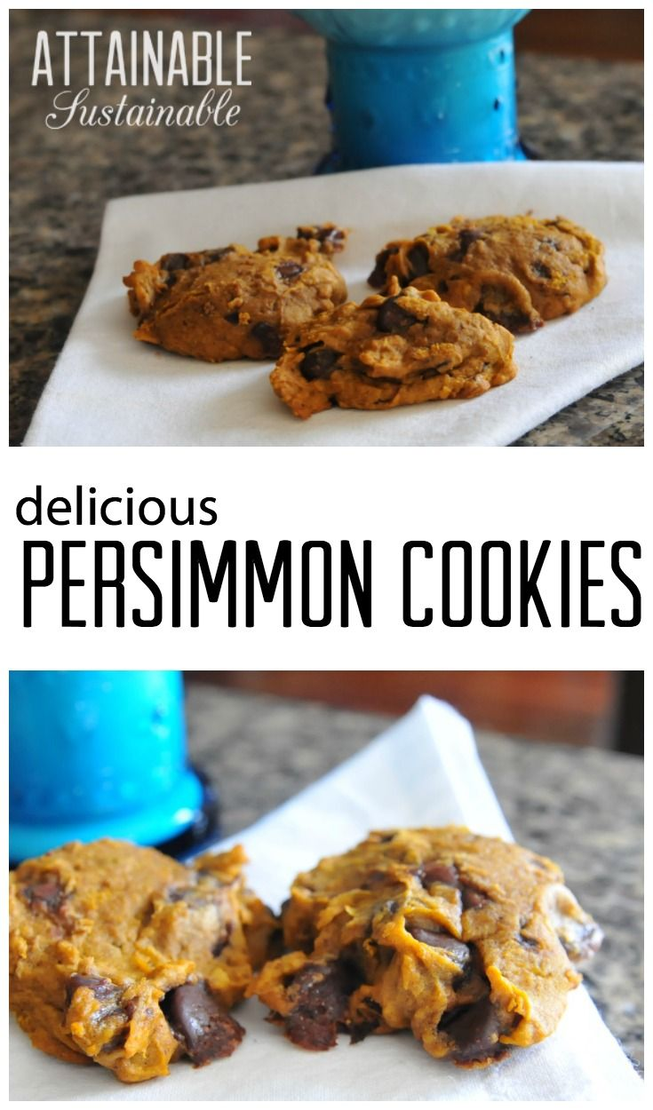 Best 25+ Persimmon cookies ideas on Pinterest | Persimmon ...