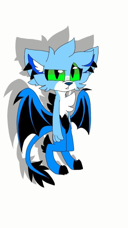 New oc? Dragon cat #taraoc dragonii