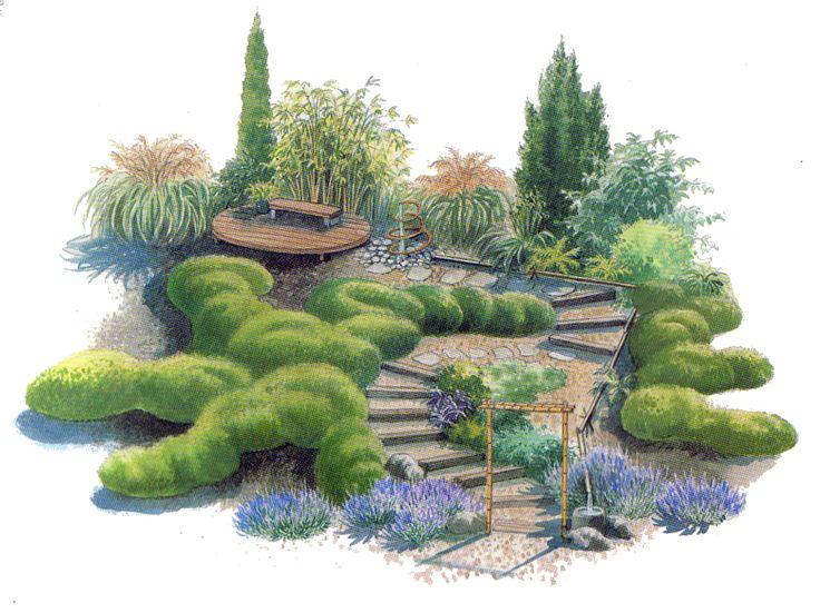 Японский сад. Вертикальный сад | Садовед