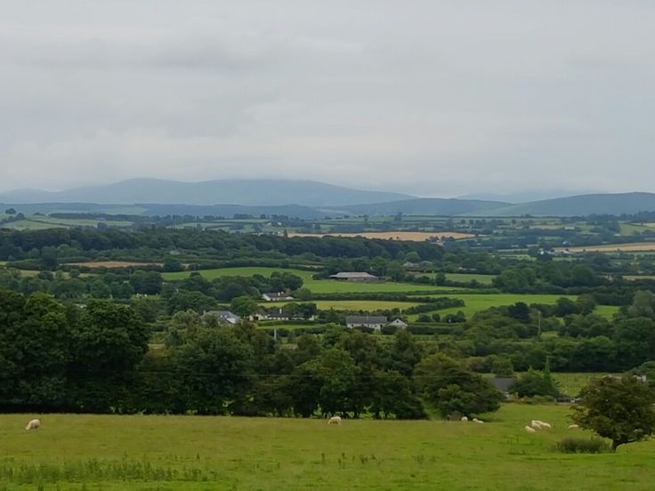 View from Old Kilculken