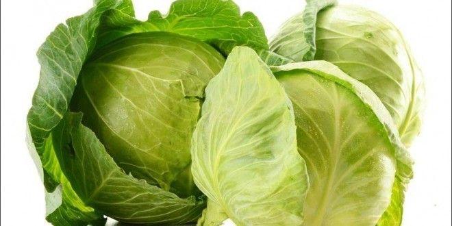 Come cucinare la verza - Ricette con la verza facili e veloci