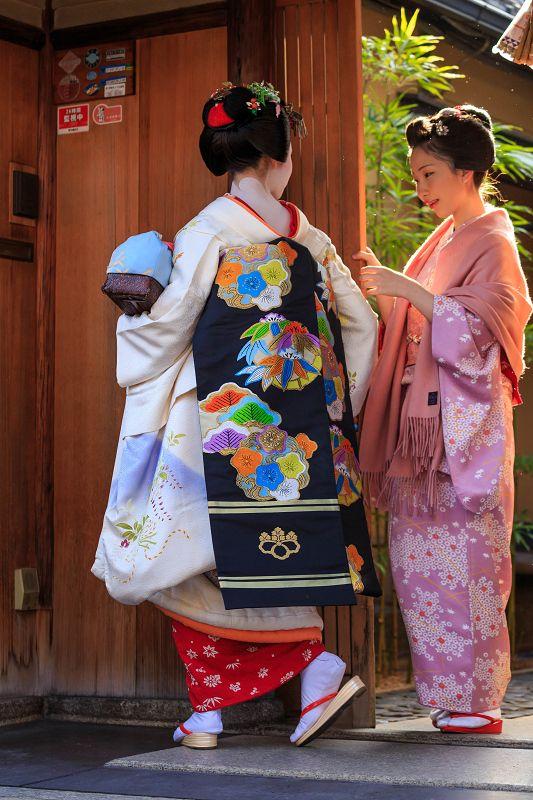 花景色-K.W.C. PhotoBlog まめ藤さんとまめ菊さん