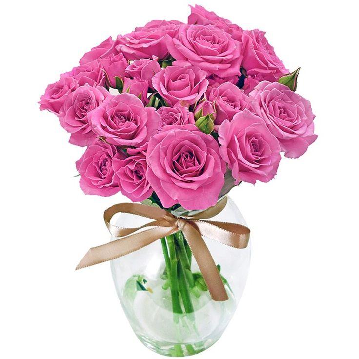 https://www.giulianaflores.com.br/contagiar-de-rosas-purple-no-vaso/p13774/?src=outubroros