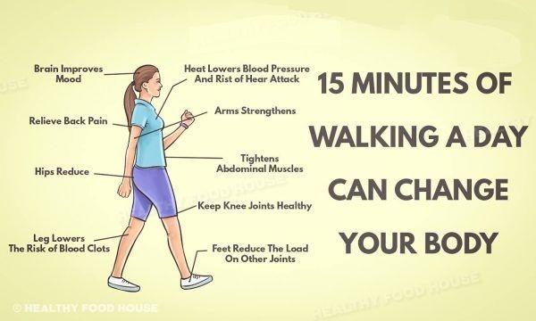 Sedavé zaměstnání a vůbec sedavý životní styl a nedostatek tělesné aktivity může vést kvážným zdravotním problémům. Nicméně není žádná výmluva na to, abyste seděli doma. Patnáct minut denně může každý obětovat a věnovat pohybu. Samozřejmě, ne všichni jsou zdraví a mají různá omezení. Ovšem chůze je jednoduchá, je to náš přirozený pohyb a poskytuje tělu …