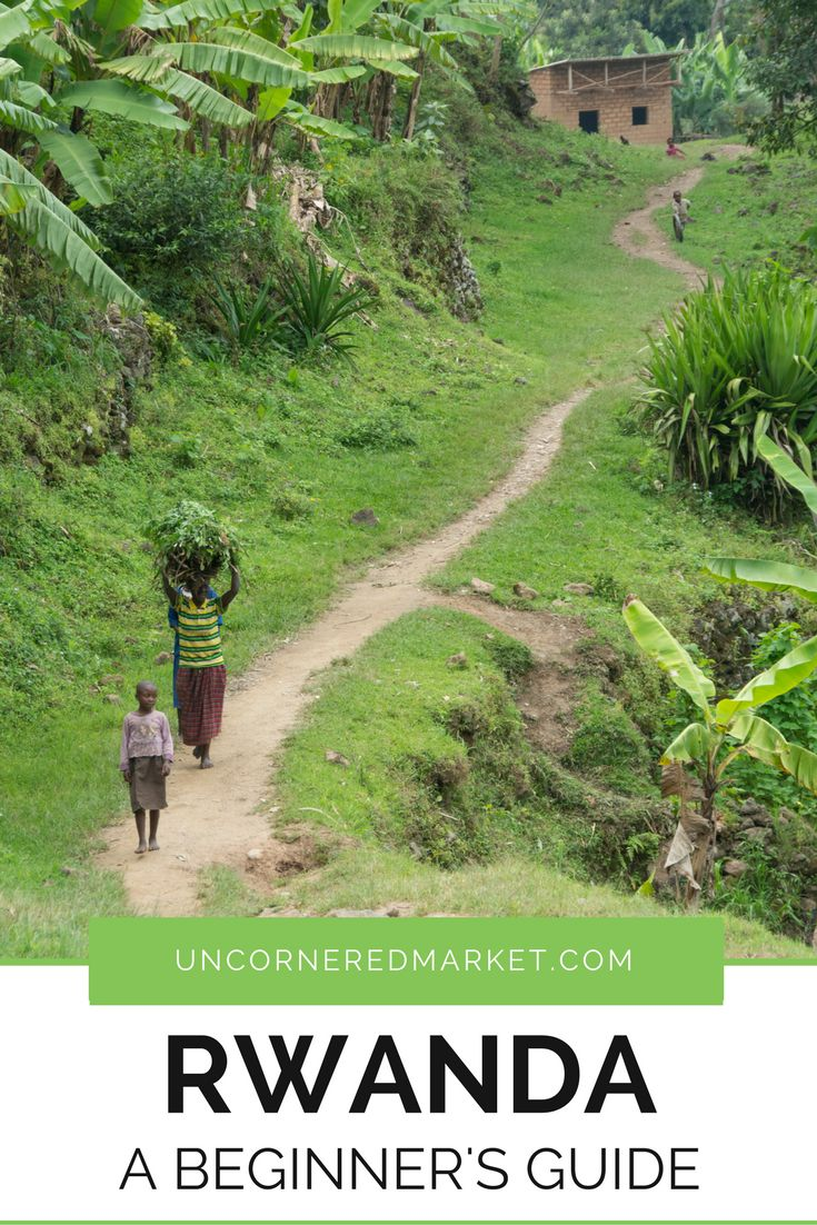 What to expect when traveling to Rwanda, a small country in central Africa known for its gorilla trekking and the genocide that took place there in the 1990s... but it's also so much more! Practical tips for your trip to Africa. | Uncornered Market Travel
