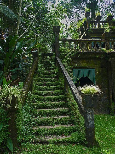 Mossy stairways in Paronella Park, Queensland, Australia (by wollmatt).