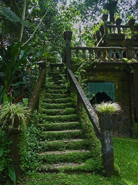 Mossy stairways in Paronella Park, Queensland, Australia (by wollmatt).