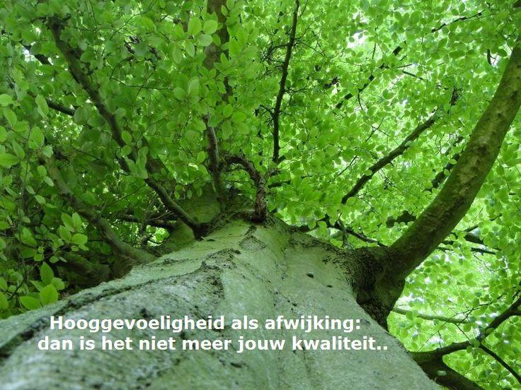 Hooggevoeligheid een afwijking? Meer op: www.facebook.nl/hooggevoeligheelgewoon en www.hooggevoeligheelgewoon.nl