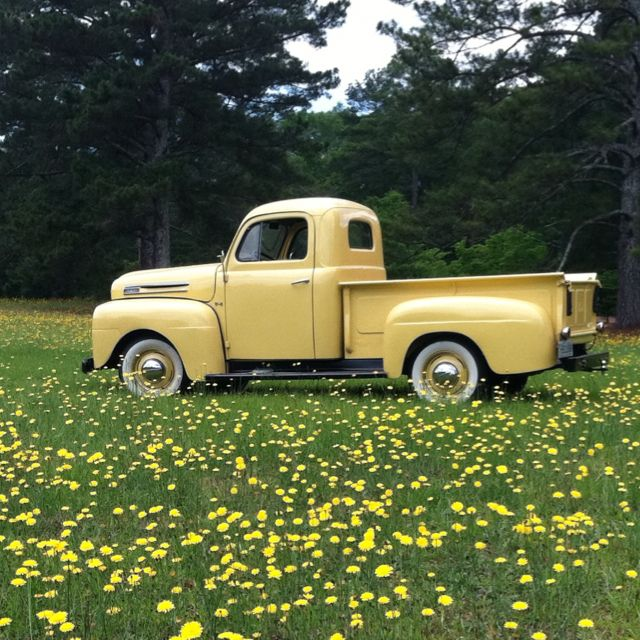 Millie! My 1948 Ford F1 in a field of dandelions!