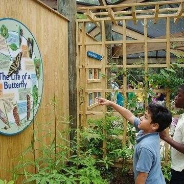 School-age kids will have a blast at the Coastal Discovery Museum, which offers scavenger hunts, costumes, and a butterfly exhibit (free admission; hour-long guided tours, $10 for adults, $5 for children).