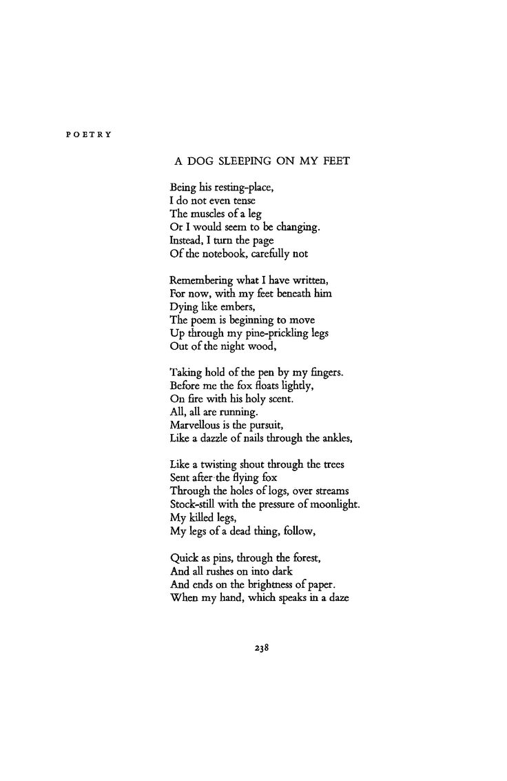 "James Dickey, ""A Dog Sleeping on My Feet"" --- January 1962 : Poetry Magazine"