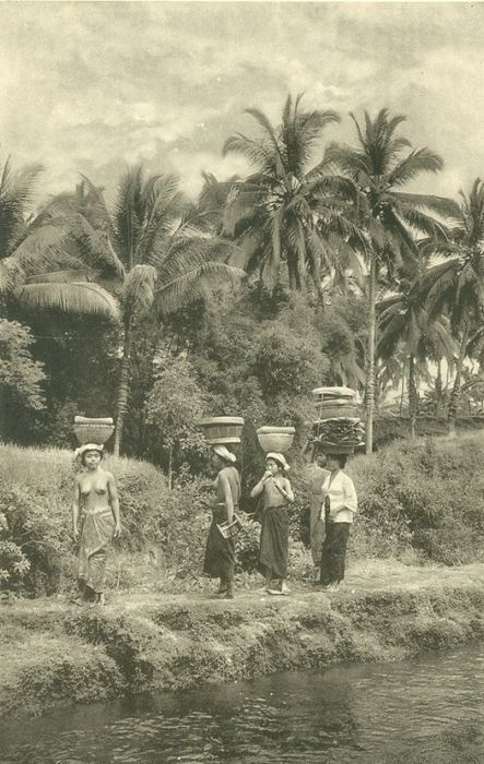 Bali; A.S.N. Wadia - The Belle of Bali. Being impressions of a pleasure cruise…
