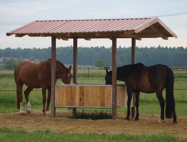 SALI's Farm: Paddock Paradise feeder station. $300 cost of supplies. Donated by Ross Sterling.  Thank you!!!!!
