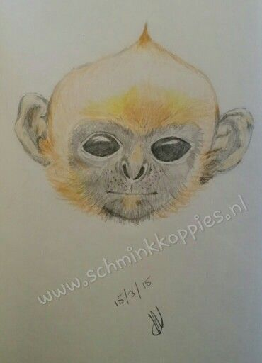 Monkey drawed by Schminkkoppies