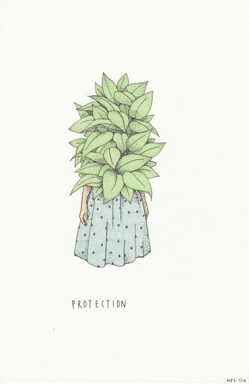 Plant Protection.Pen and Ink on vellum. © Mali Fischer 2014 Original illustration for sale here