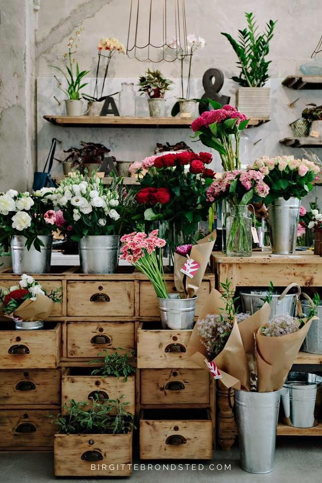 10 Best Flower Shop Lighting and Design Images on Pinterest