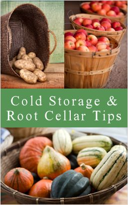 Garden Crops: Cold Storage Ideas & Root Cellar Tips  Also great chart for how much of different things you should store for a family of four
