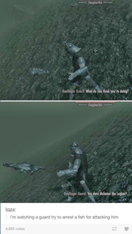 Silly Skyrim, I've been laughing at this for quite some time now