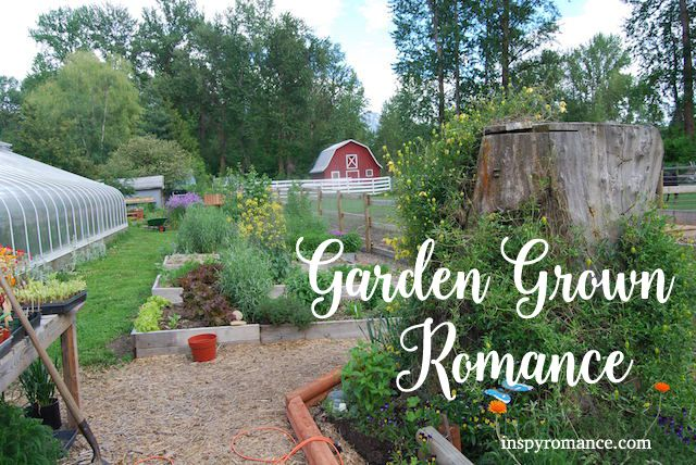Greenhouses + Gardens + Sweet Love = Garden Grown Romance! When my fellow Arcadia Valley Romance authors and I began brainstorming our mega-series about a year ago now, we agreed to each choose one…