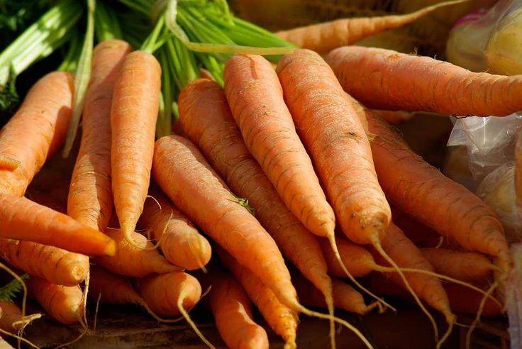 best vegetables for home garden Health benefits of