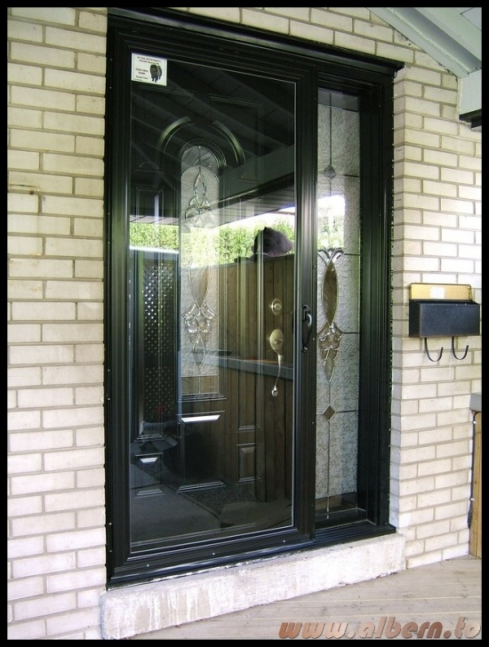 Black storm door 07 storm door picture door black for Front door with storm door
