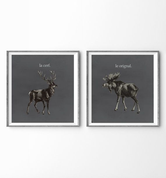 LONG WEEKEND SALE - 15% off whole shop! Enter ILOVEAGOODSALE at checkout. Happy Shopping!  An illustration of a Moose & Deer. These animals live up