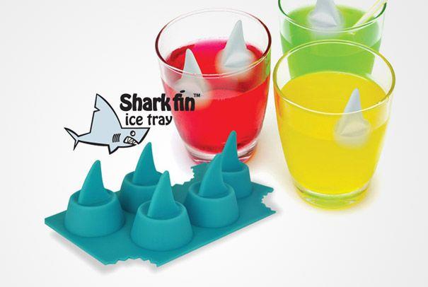 Sharkkk..