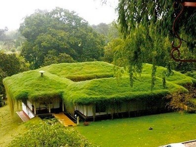 Living roof - green dwelling. it's kind of like a hobbit hole.