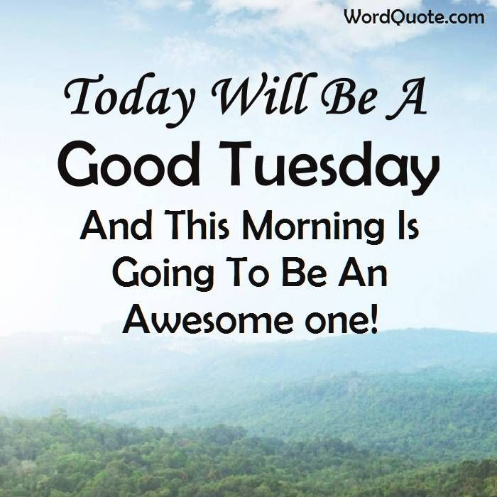 Happy Tuesday Quotes And Sayings                                                                                                                                                     More