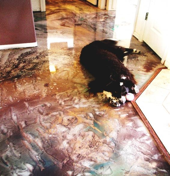plus de 25 des meilleures id es de la cat gorie plancher en poxy sur pinterest peinture poxy. Black Bedroom Furniture Sets. Home Design Ideas
