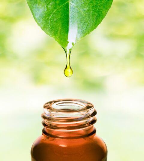 Sichere Anwendung ätherischer Öle: alles über Reinheit und Qualität, Lagerung, Haltbarkeit, Hautreaktionen, Schwangerschaft und Stillzeit, Babies und Kleinkinder ...