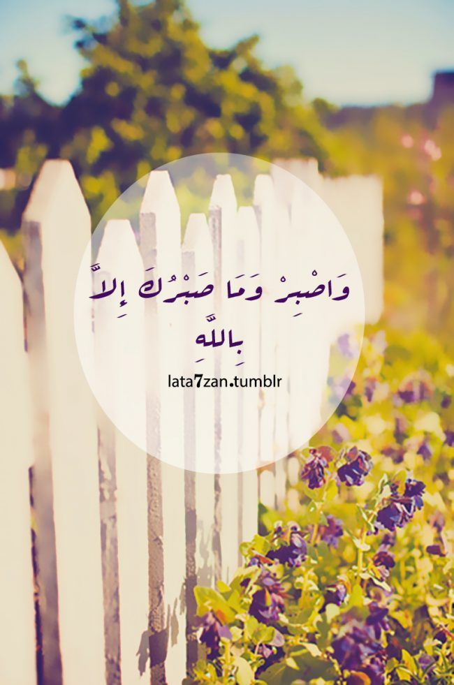 Quran: Endure With Patience