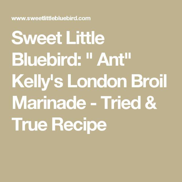 """Sweet Little Bluebird: """" Ant"""" Kelly's London Broil Marinade - Tried & True Recipe"""