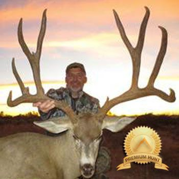 We feel that Mexico Mule Deer hunting gives hunters the best opportunity at a B&C Mule Deer available anywhere