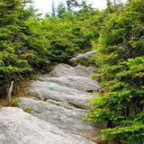 Hunger Mountain, Waterbury Trail - Vermont   AllTrails.com