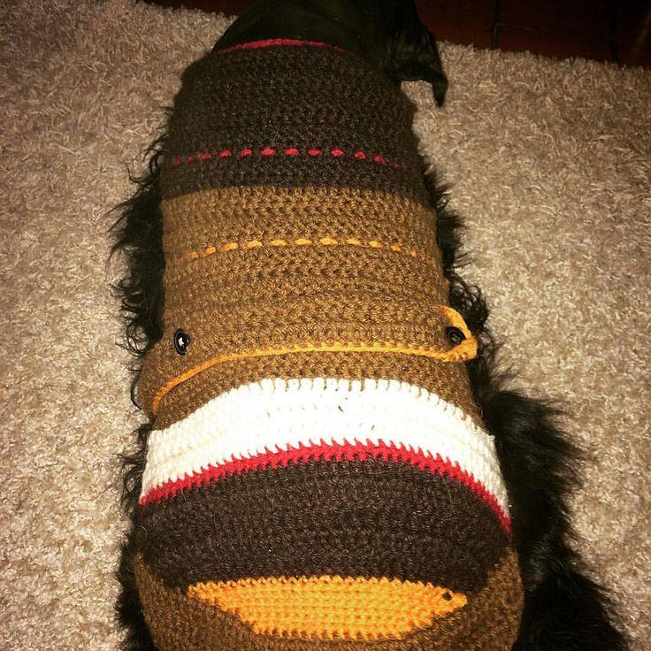 Se me ocurrió mandar a pelar al Julio y ahora andaba muerto de frío, así q le tejí un chaleco, se ve terrible de guapo.